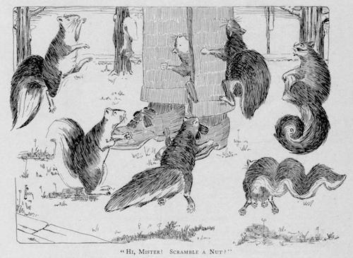 """L.F. Peck, """"Hi, Mister! Scramble a Nut?"""" Harvard Lampoon, Vol. 46, No. 6 (Dec. 17, 1903), 121."""